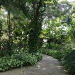 Jardim é o bairro mais desejado de Santo André