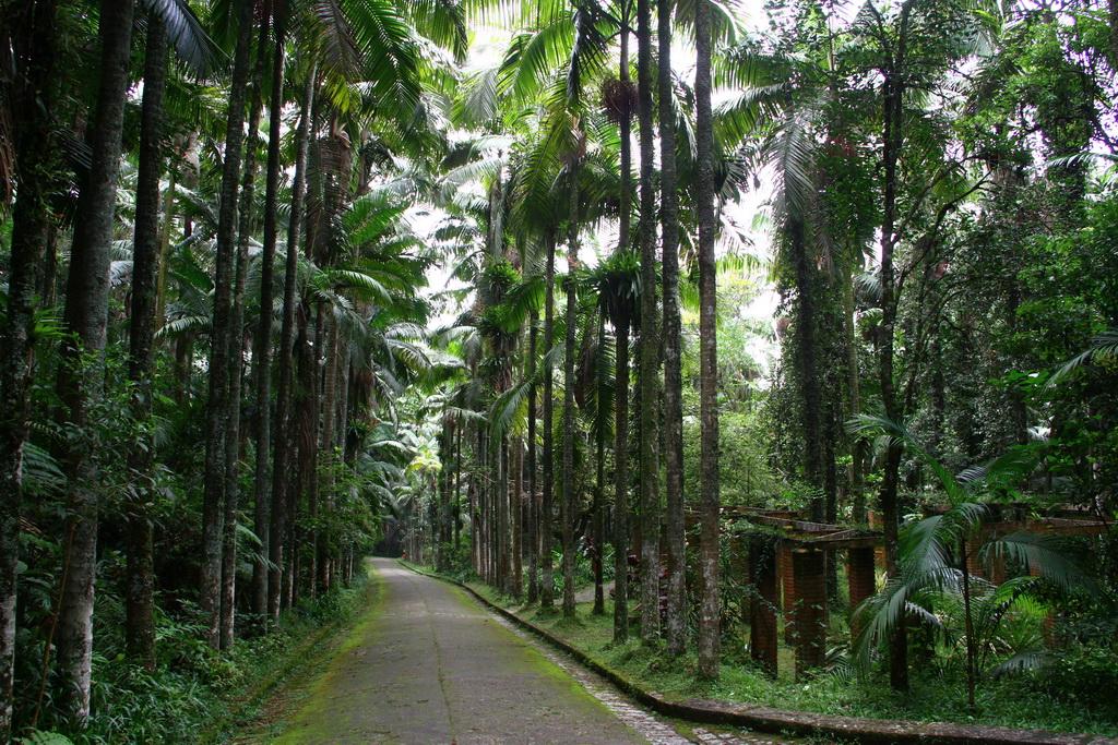 Parque Guapituba próximo aoAquitânia
